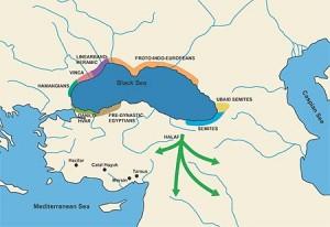 Migratia populatiilor afectate