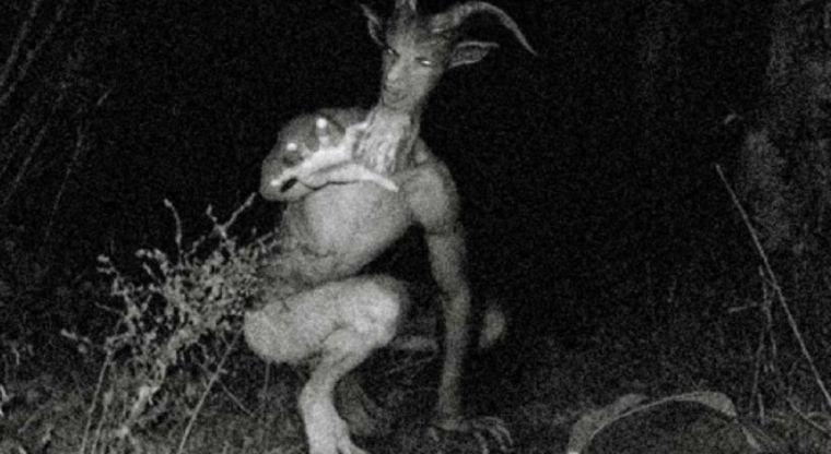 diavolul din Devon