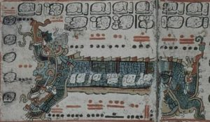 codexul-dresda-3