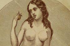 """Cum era privit sexul intr-un ghid aparut in 1861: """"Sexul de doua ori pe saptamana dauneaza"""""""