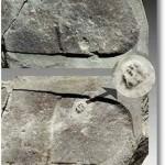 Prezenta trilobitului pe calcai